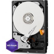 PACK 10 Unidades WD PURPLE 1TB